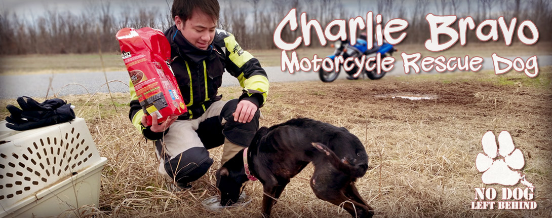 The Charlie Bravo Story